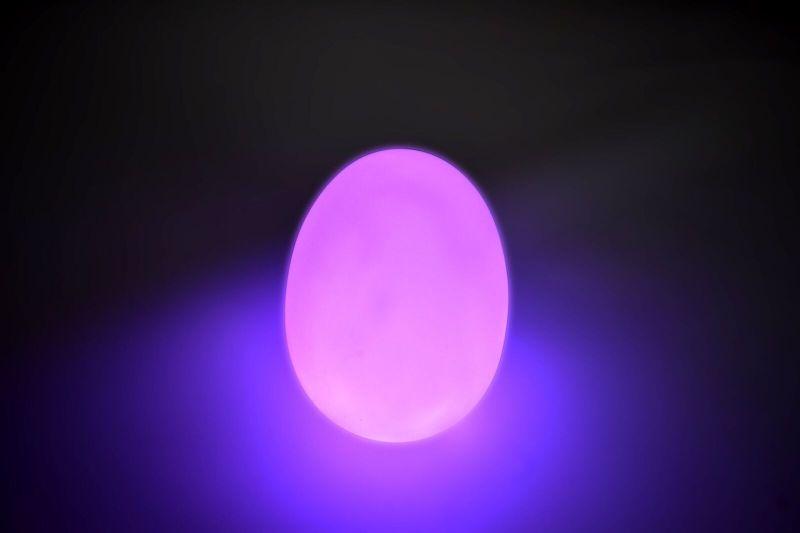 Apgaismotas olas